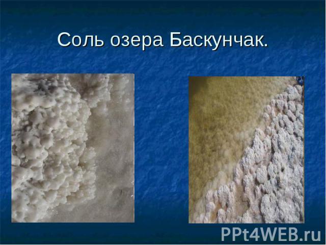 Соль озера Баскунчак.