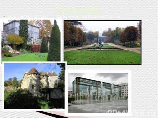 Ландшафт Ботанический сад Руана Дворцово-парковый комплекс Версаль Дендрологичес