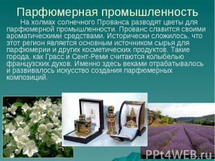 Парфюмерная промышленность На холмах солнечного Прованса разводят цветы для парф