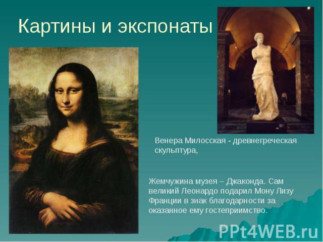 Картины и экспонаты