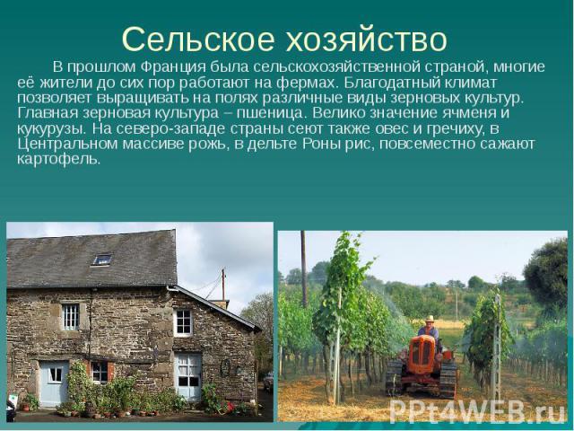 Сельское хозяйство В прошлом Франция была сельскохозяйственной страной, многие её жители до сих пор работают на фермах. Благодатный климат позволяет выращивать на полях различные виды зерновых культур. Главная зерновая культура – пшеница. Велико зна…