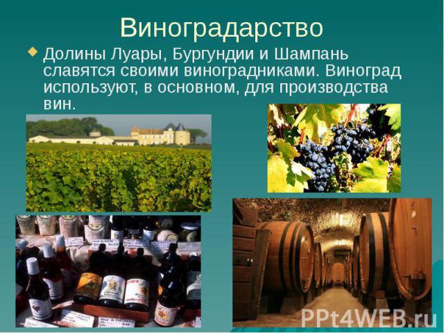Виноградарство Долины Луары, Бургундии и Шампань славятся своими виноградниками. Виноград используют, в основном, для производства вин.