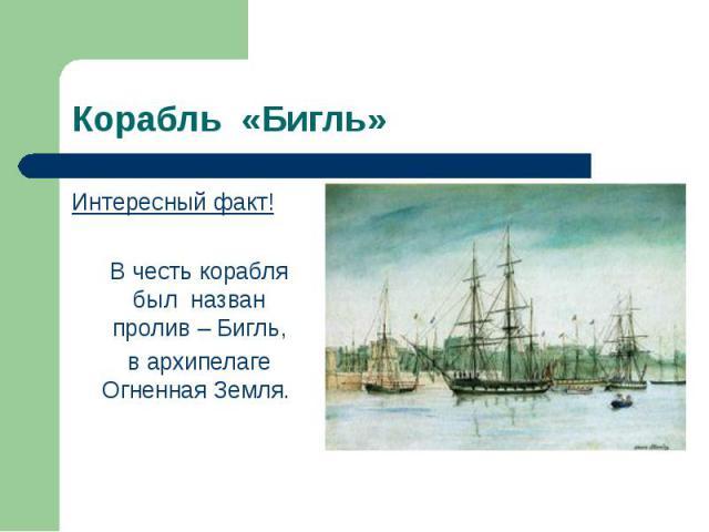 Интересный факт! Интересный факт! В честь корабля был назван пролив – Бигль, в архипелаге Огненная Земля.