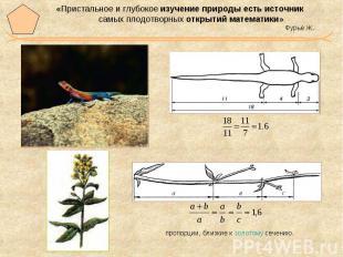 «Пристальное и глубокое изучение природы есть источник самых плодотворных открыт