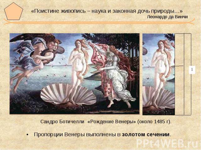 «Поистине живопись – наука и законная дочь природы…» Леонардо да Винчи Сандро Ботичелли «Рождение Венеры» (около 1485 г). Пропорции Венеры выполнены в золотом сечении.