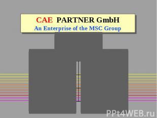 CAE PARTNER GmbH An Enterprise of the MSC Group