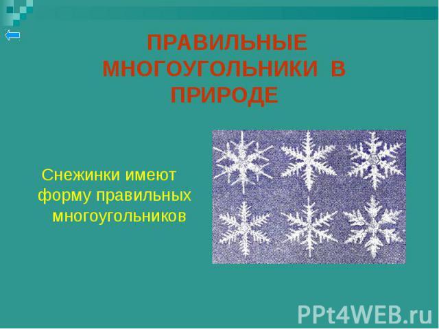 Снежинки имеют форму правильных многоугольников Снежинки имеют форму правильных многоугольников