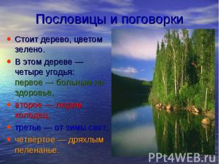 Пословицы и поговорки Стоит дерево, цветом зелено. В этом дереве— четыре у