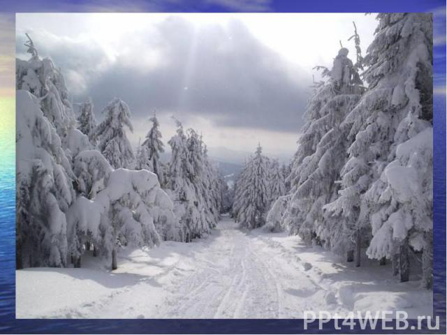 Когда это бывает? Снег на полях, Лёд на реках, Вьюга гуляет. Когда это бывает? (Зимой)