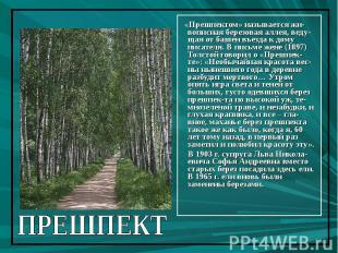 «Прешпектом» называется жи-вописная березовая аллея, веду-щая от башен въезда к