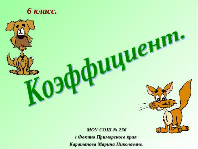 МОУ СОШ № 256 г.Фокино Приморского края. Каратанова Марина Николаевна.