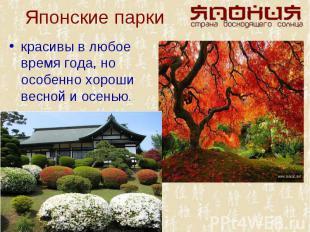 красивы в любое время года, но особенно хороши весной и осенью. красивы в любое