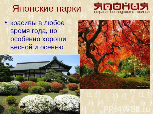 красивы в любое время года, но особенно хороши весной и осенью. красивы в любое время года, но особенно хороши весной и осенью.