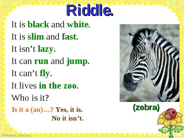 Riddle. It is black and white. It is slim and fast. It isn't lazy. It can run and jump. It can't fly. It lives in the zoo. Who is it?