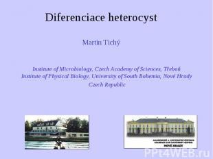 Diferenciace heterocyst Martin Tichý Martin Tichý Institute of Microbiology, Cze