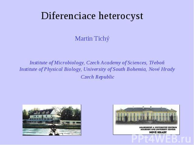 Diferenciace heterocyst Martin Tichý Martin Tichý Institute of Microbiology, Czech Academy of Sciences, Třeboň Institute of Physical Biology, University of South Bohemia, Nové Hrady Czech Republic