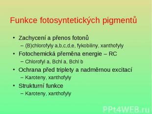 Funkce fotosyntetických pigmentů Zachycení a přenos fotonů (B)chlorofyly a,b,c,d