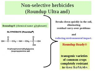 Non-selective herbicides (Roundup Ultra and)