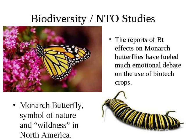 "Biodiversity / NTO Studies Monarch Butterfly, symbol of nature and ""wildness"" in North America."