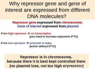 Why repressor gene and gene of interest are expressed from different DNA molecul