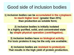 Good side of inclusion bodies