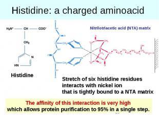 Histidine: a charged aminoacid