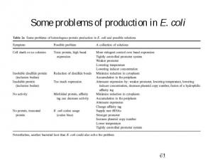 Some problems of production in E. coli