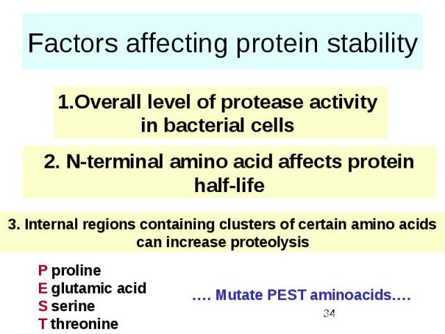 Factors affecting protein stability