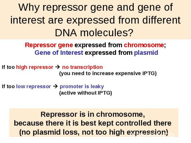 Why repressor gene and gene of interest are expressed from different DNA molecules?