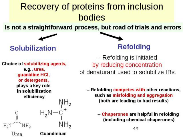 Recovery of proteins from inclusion bodies