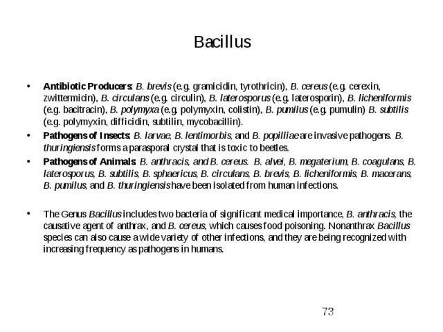 Bacillus Antibiotic Producers: B. brevis (e.g. gramicidin, tyrothricin), B. cereus (e.g. cerexin, zwittermicin), B. circulans (e.g. circulin), B. laterosporus (e.g. laterosporin), B. licheniformis (e.g. bacitracin), B. polymyxa (e.g. polymyxin, coli…