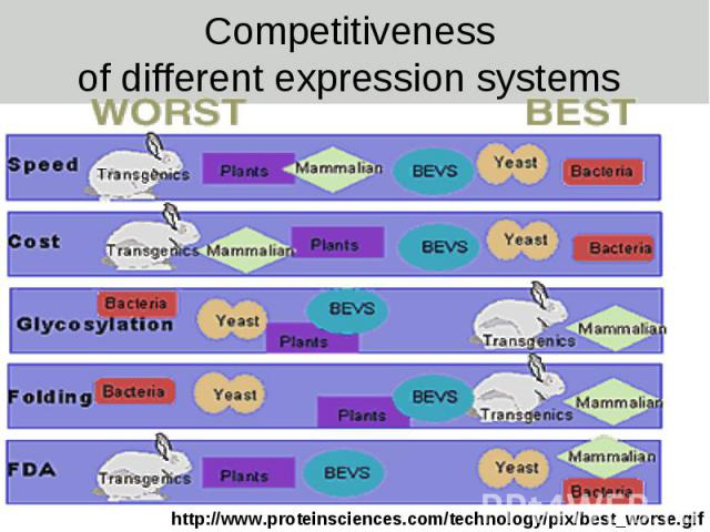 Competitiveness of different expression systems