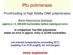 Pfu polimerase