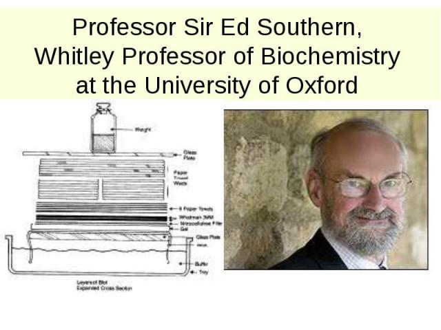 Professor Sir Ed Southern, Whitley Professor of Biochemistry at the University of Oxford
