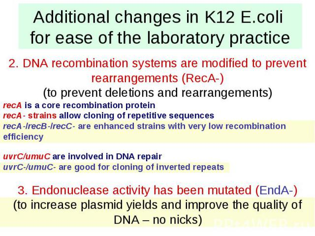 Additional changes in K12 E.coli for ease of the laboratory practice