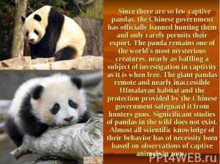 Since there are so few captive pandas, the Chinese government has officially ban