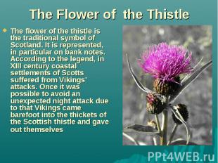 The Flower of the Thistle The flower of the thistle is the traditional symbol of