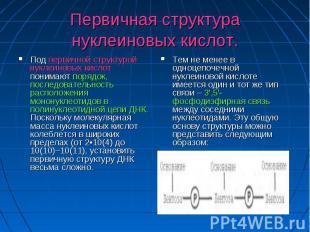 Первичная структура нуклеиновых кислот. Под первичной структурой нуклеиновых кис
