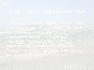 Компоненты агроэкосистемы Продуценты: культурные растения, травы сенокосов и пас