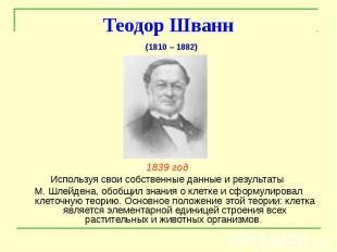 Теодор Шванн 1839 год Используя свои собственные данные и результаты М. Шлейдена