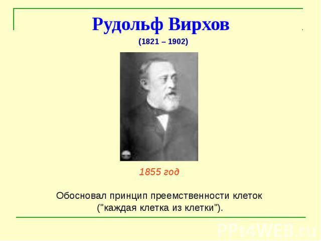 """Рудольф Вирхов 1855 год Обосновал принцип преемственности клеток (""""каждая клетка из клетки"""")."""