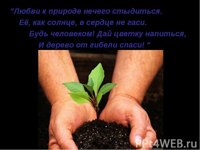 """""""Любви к природе нечего стыдиться. """"Любви к природе нечего стыдиться. Её, как солнце, в сердце не гаси. Будь человеком! Дай цветку напиться, И дерево от гибели спаси! """""""