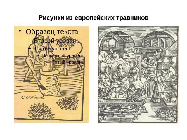 Рисунки из европейских травников