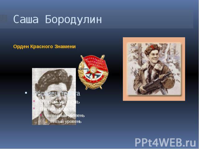 Саша Бородулин Орден Красного Знамени
