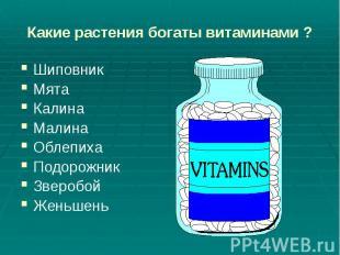 Какие растения богаты витаминами ? Шиповник Мята Калина Малина Облепиха Подорожн