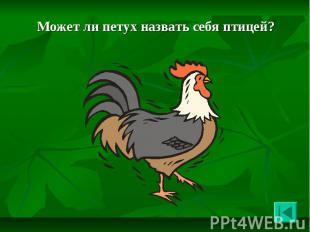 Может ли петух назвать себя птицей? Может ли петух назвать себя птицей?