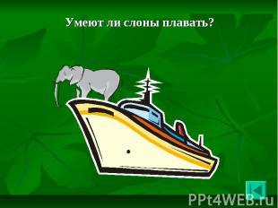 Умеют ли слоны плавать? Умеют ли слоны плавать?