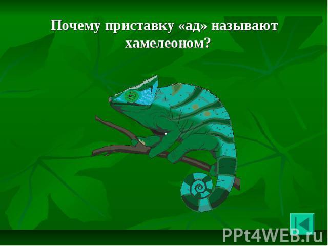Почему приставку «ад» называют хамелеоном? Почему приставку «ад» называют хамелеоном?