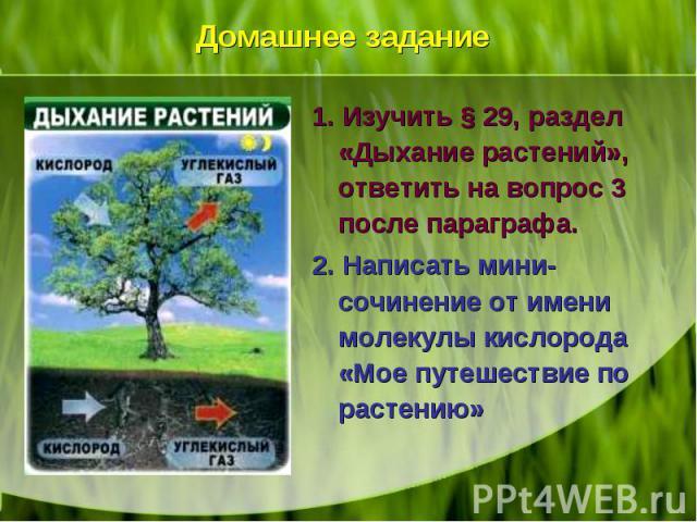 1. Изучить § 29, раздел «Дыхание растений», ответить на вопрос 3 после параграфа. 1. Изучить § 29, раздел «Дыхание растений», ответить на вопрос 3 после параграфа. 2. Написать мини-сочинение от имени молекулы кислорода «Мое путешествие по растению»