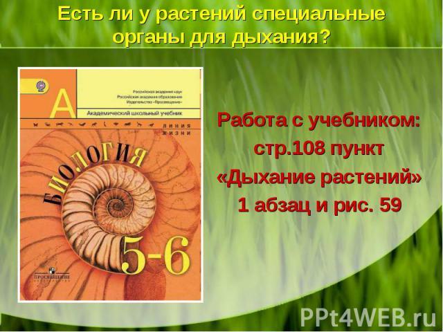 Работа с учебником: стр.108 пункт «Дыхание растений» 1 абзац и рис. 59 Работа с учебником: стр.108 пункт «Дыхание растений» 1 абзац и рис. 59